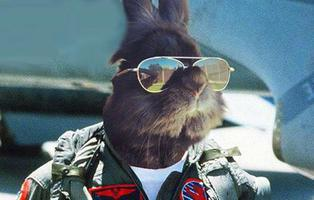 """Lanzan una campaña para que la gente """"reproduzca como conejos"""": """"mi padre tuvo 63 hijos"""""""