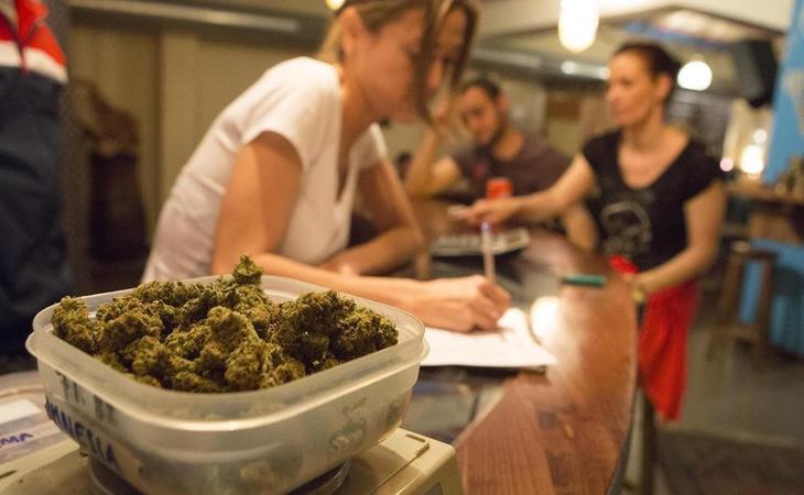 El Parlament aprobó una norma que regulaba el consumo del cannabis, recurrida por el Gobierno central