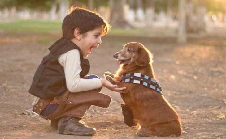 Los pequeños deben comprender que las mascotas implican responsabilidad