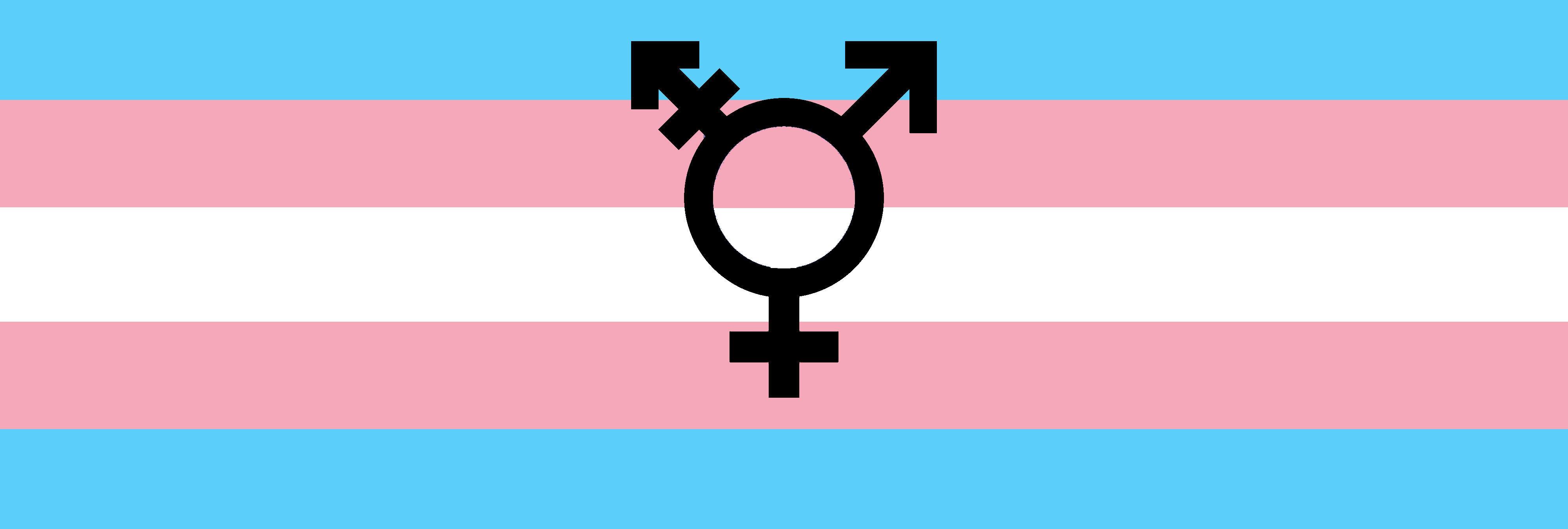 El Congreso aprueba sin el apoyo del PP que las personas trans puedan cambiar su sexo legal sin declararse enfermas