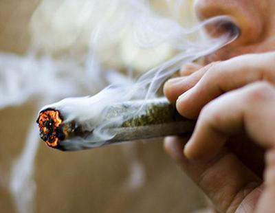 CBD: la marihuana con la que puedes conducir o trabajar sin ningún tipo de problema