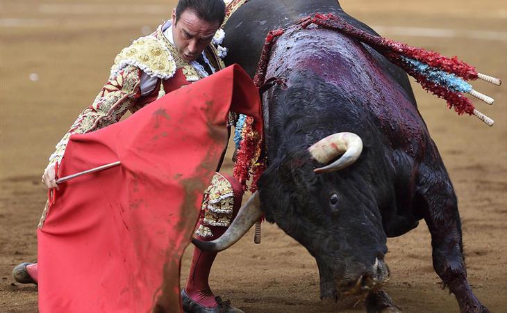 Suspendida la ley de toros balear