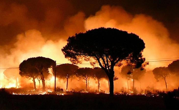 Incendios de Doñana