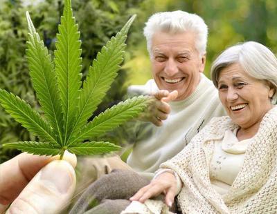 Pillan a dos ancianos de 80 años transportando 27 kg de marihuana 'como regalo de Navidad'