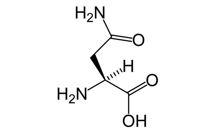 La acrilamida que contienen los fritos produce picos de azúcar y aumenta el riesgo de padecer cáncer