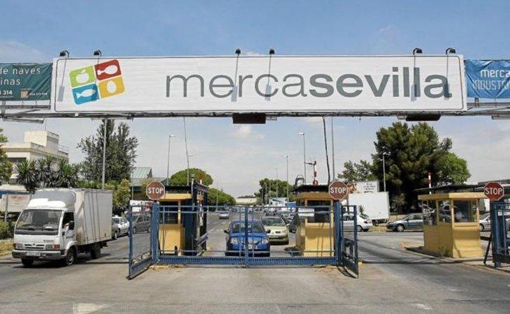 El caso ERE estalló tras las investigaciones en la gestión irregular de Mercasevilla