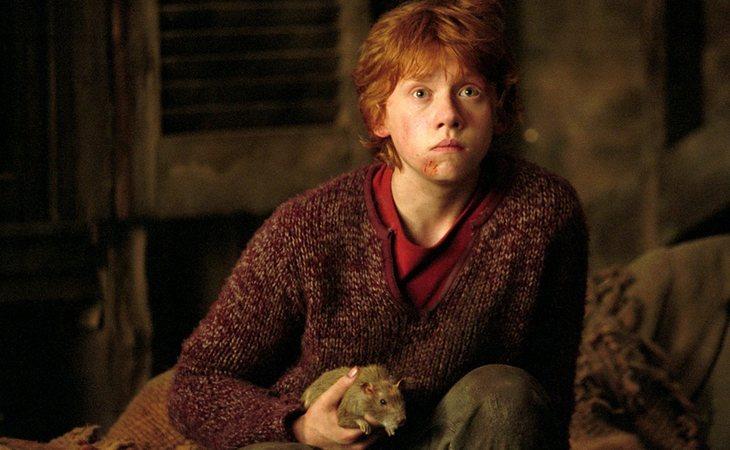 La mascota de Ron Weasley resultó ser colaborador de Voldemort