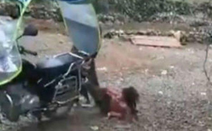 La niña intentó sin éxito deshacerse de la atadura de su padre