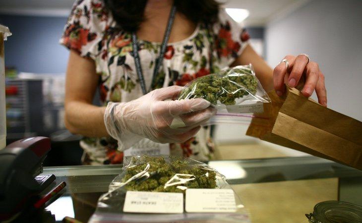 El Govern intentará persuadir de los beneficios de legalizar la marihuana