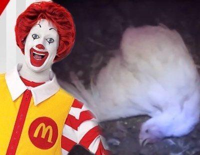 El polémico vídeo que muestra la verdadera cara que esconde McDonald's