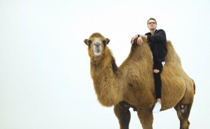 Mikolas junto al camello en el videoclip de 'Lie to Me'