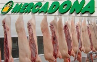 La principal carne de cerdo de Mercadona no cuenta con el certificado de bienestar animal