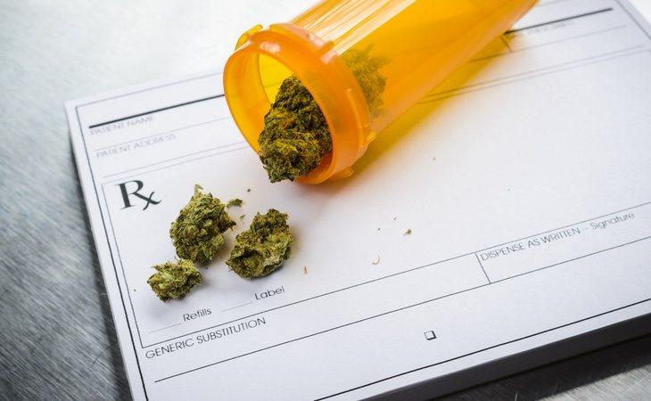 La OMS avala en su informe especialmente la marihuana terapéutica