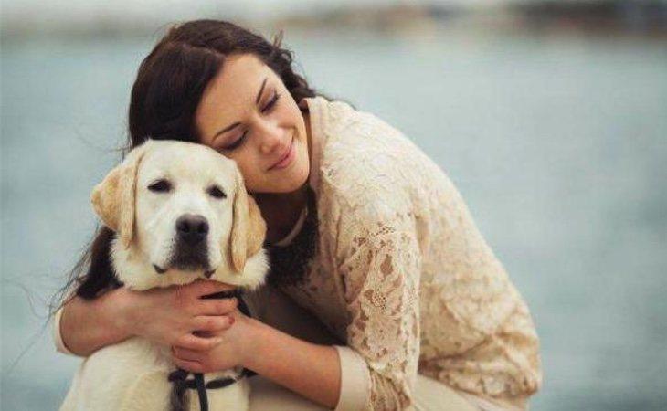 Los perros son los animales preferidos por las personas