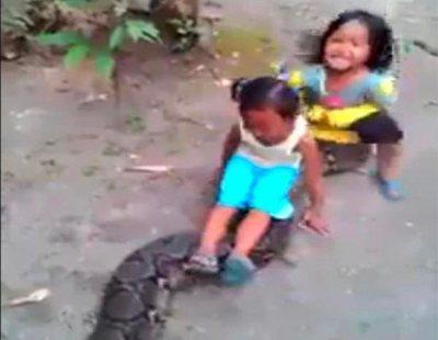 Unos padres graban a sus hijas montando sobre una pitón gigante y lo difunden en las redes