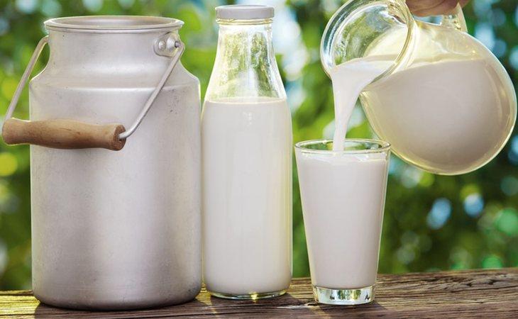 La leche cruda puede ser muy perjudicial