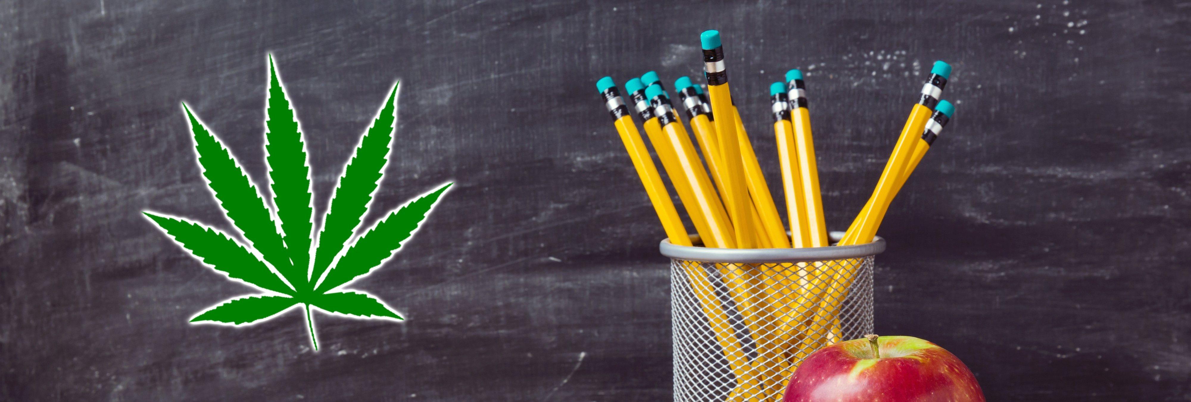 Varias escuelas de Florida (EEUU) ya permiten el uso de marihuana medicinal en sus aulas