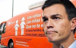 El Gobierno de Pedro Sánchez abre expediente para retirar la utilidad pública a Hazte Oír