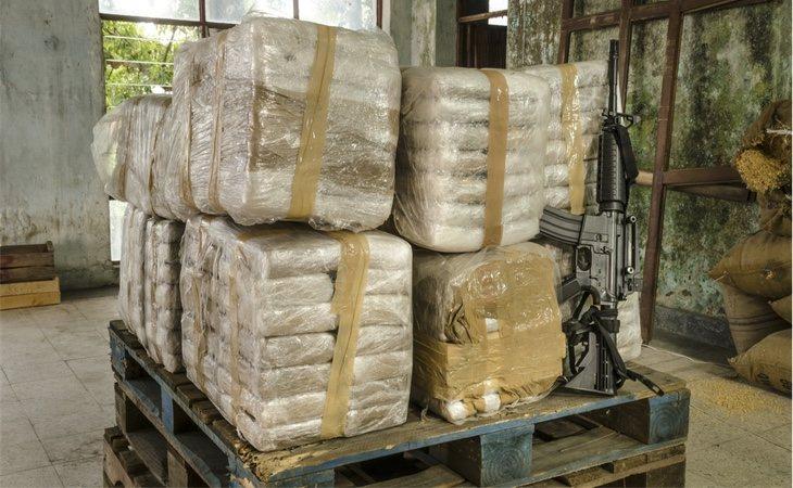 Existen grandes planraciones y talleres dedicados única y exclusivamente al negocio de la cocaína