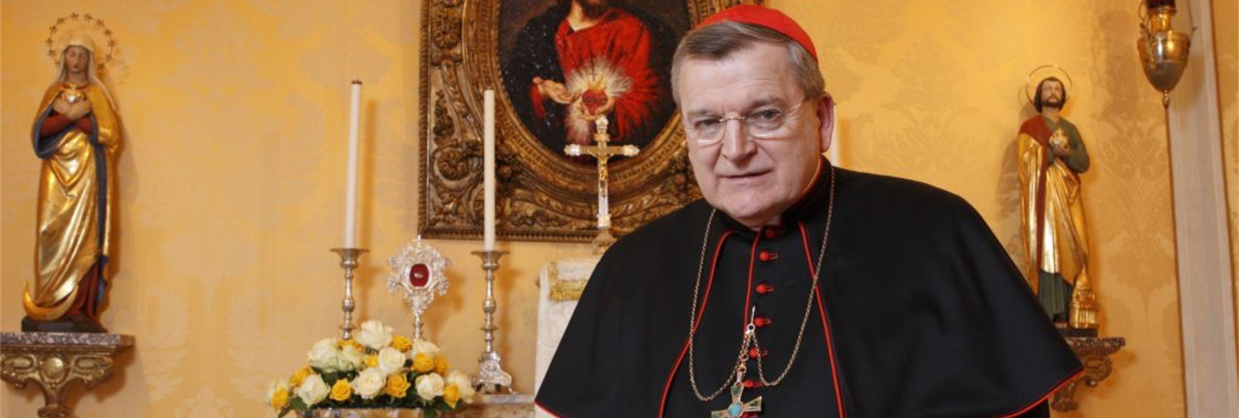 Cardenal católico asegura que la homosexualidad es la culpable del abuso sexual infantil