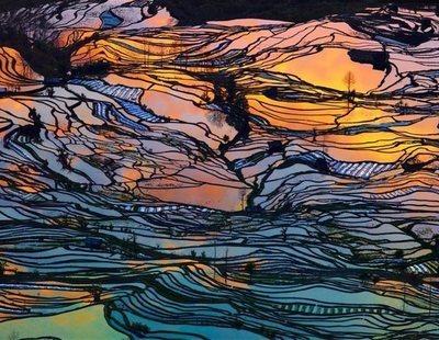 Los extraños arrozales 'artísticos' que causan intriga en China