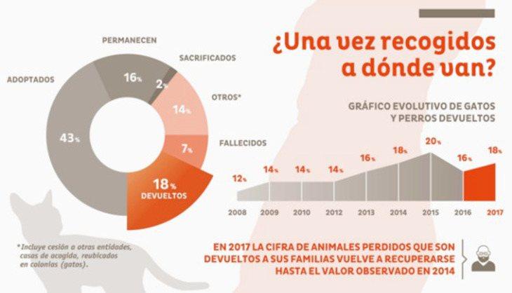 Datos de la Fundación Affinity