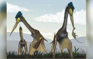 Ciempiés gigantes e insectos de dos metros: las criaturas prehistóricas más impresionantes