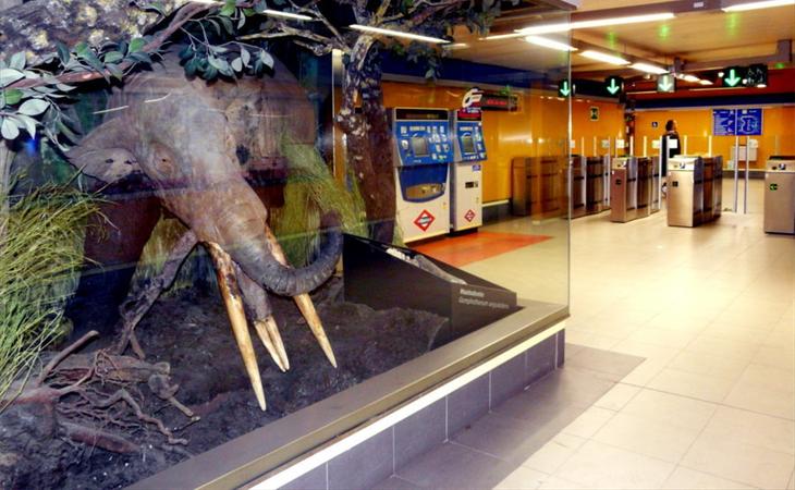 La estación de Carpetana alberga un pequeño museo con vestigios prehistóricos y un centro de interpretación