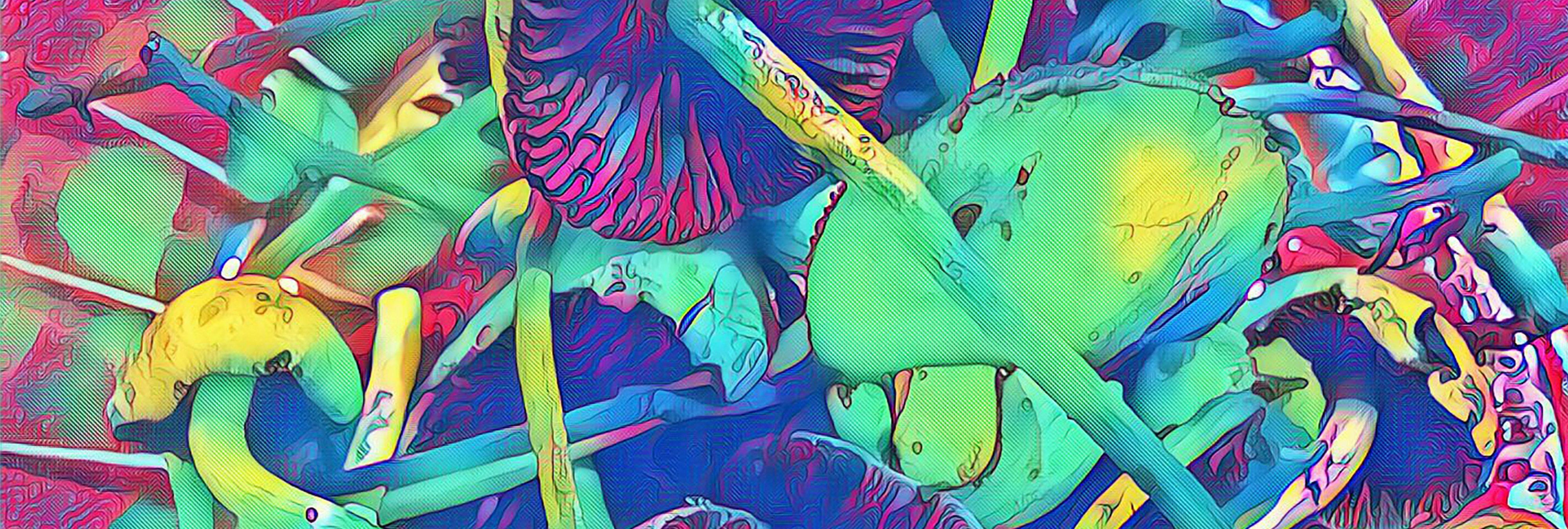 Es hora de legalizar las setas alucinógenas para uso medicinal, según la ciencia