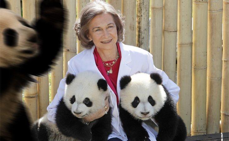 Sofía de visita en el Zoo de Madrid