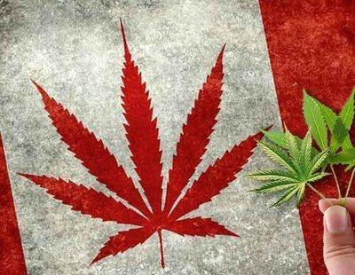 Crisis de la marihuana en Canadá: el país no da abasto