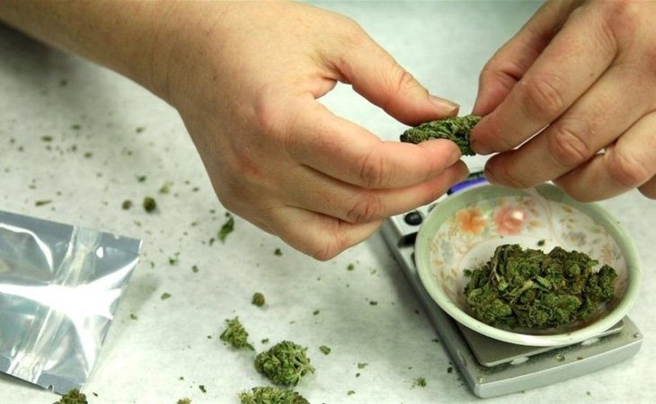 Los altos niveles de THC la vuelven más adictiva que la marihuana tradicional