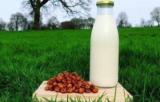 Un hombre británico afirma haber inventado la horchata