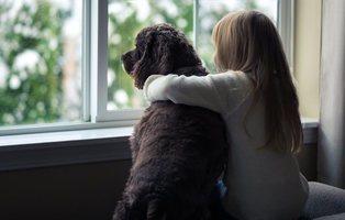 Detenida en Huelva por arrojar por la ventana a un perro al discutir con su ex pareja