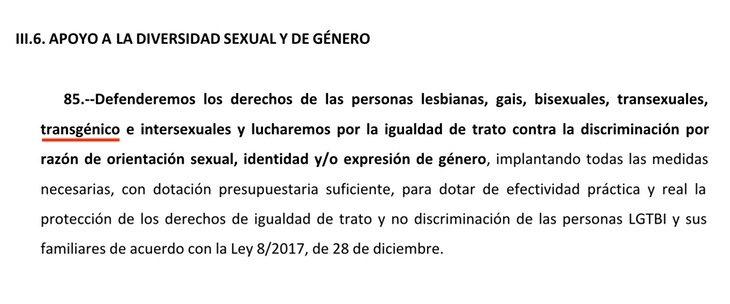 El punto 85 se centra en el colectivo LGTBIQ+ y las personas 'transgénico'   elDiario.es
