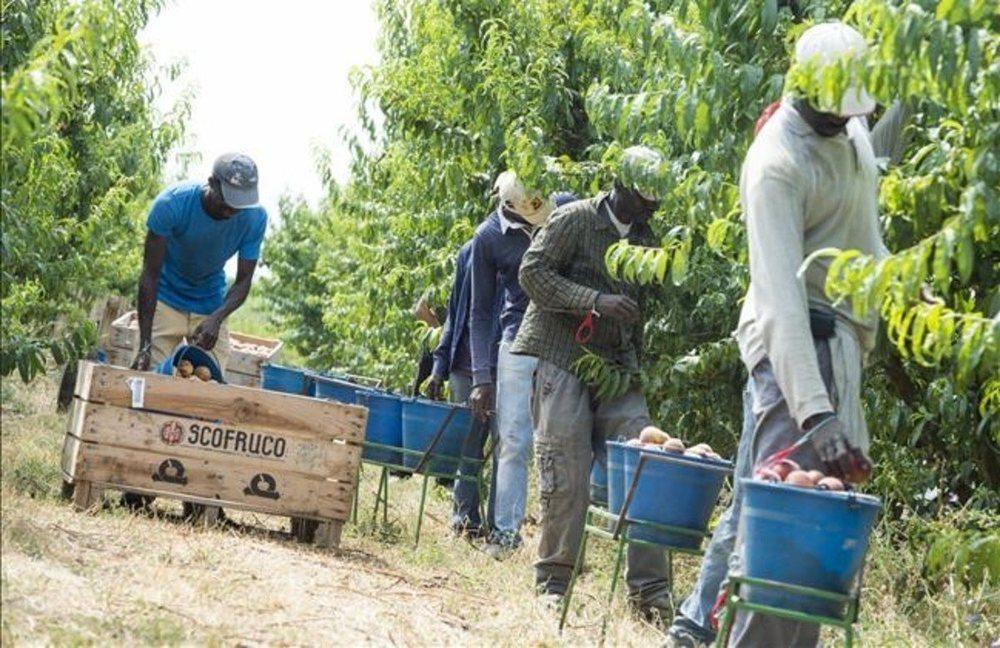 Los parados podrán trabajar mientras cobran el subsidio para garantizar el abastecimiento de alimentos