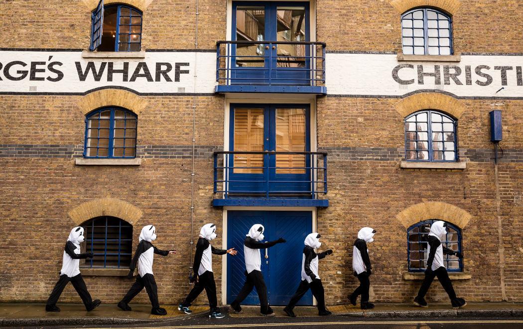 Londres se llena de pandas para anunciar la Hora del Planeta