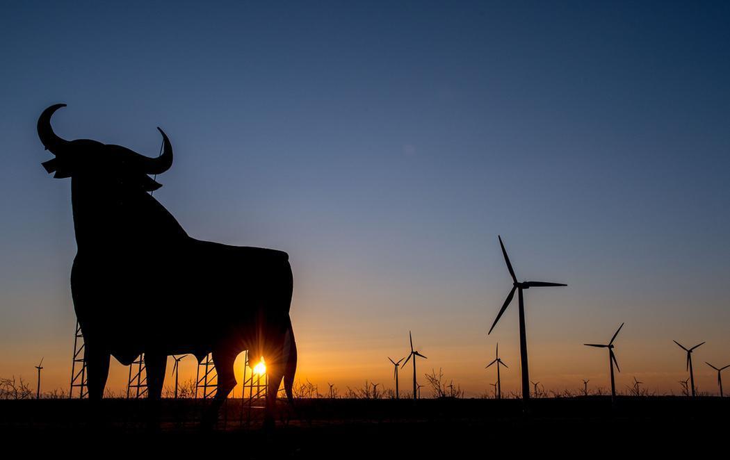 El toro no es un símbolo de España