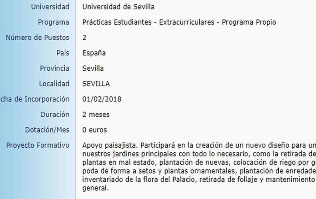 Trabaja gratis de becario en el Palacio de Dueñas