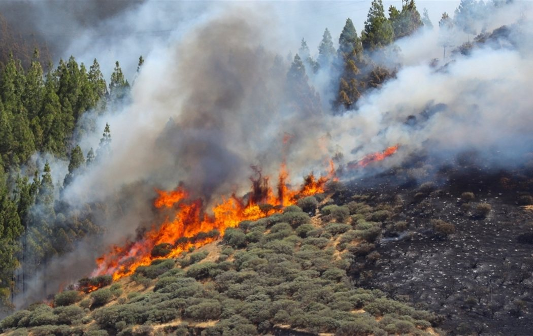 El incendio de Gran Canaria avanza sin control