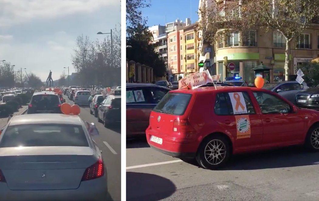 PP, VOX y Cs se manifiestan en varias ciudades españolas contra la Ley Celaá