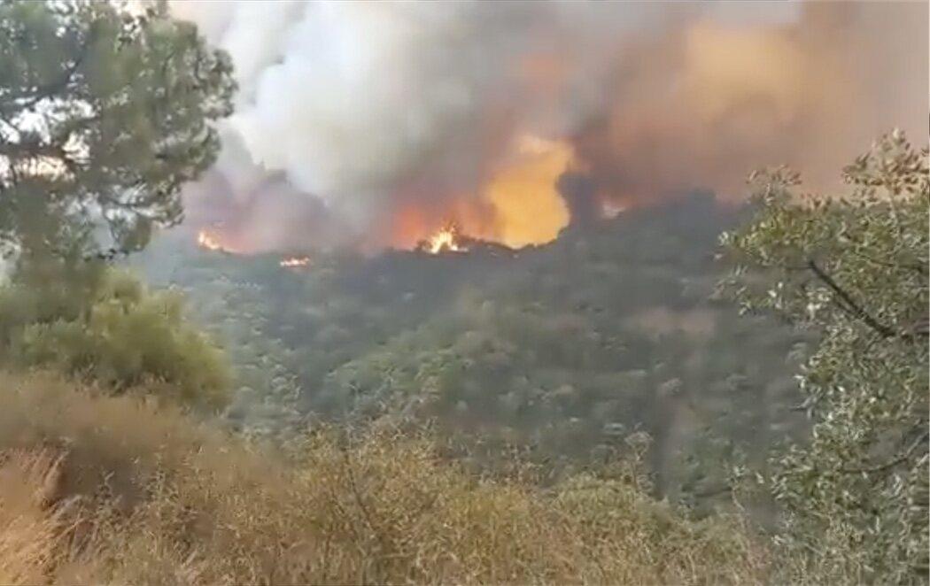 El incendio en Sierra Bermeja arrasa 7.400 hectáreas y obliga a evacuar a otras 1.600 personas