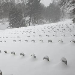 Nueva York y Washington DC, cubiertas bajo la nieve