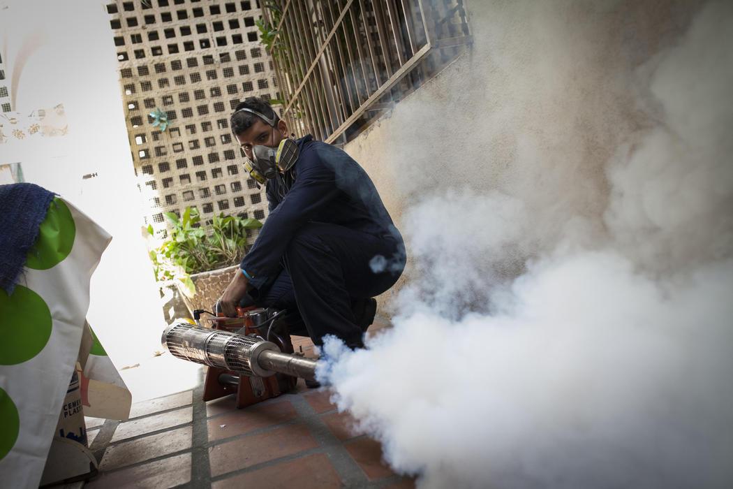 Caracas también lucha con el Zika