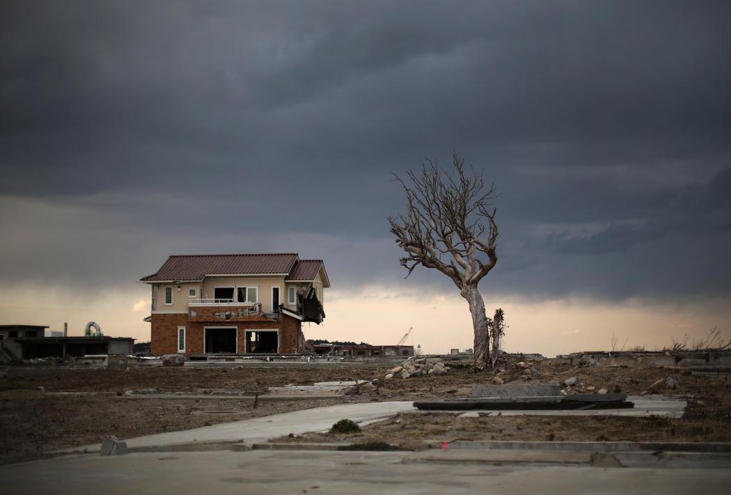 Una casa sin puertas ni ventanas se alza junto a un árbol en Fukushima cinco años después