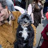 La perra Heidi se disfraza de Conejo de Pascua