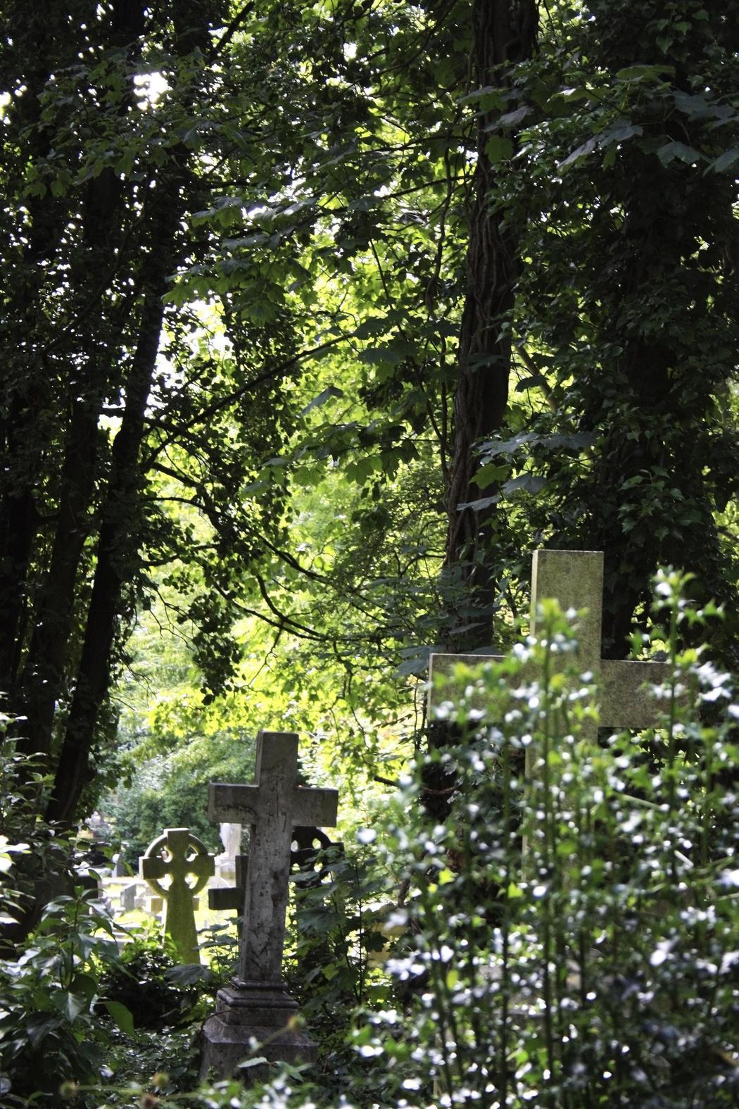 Visitar un cementerio no tiene por qué ser tétrico