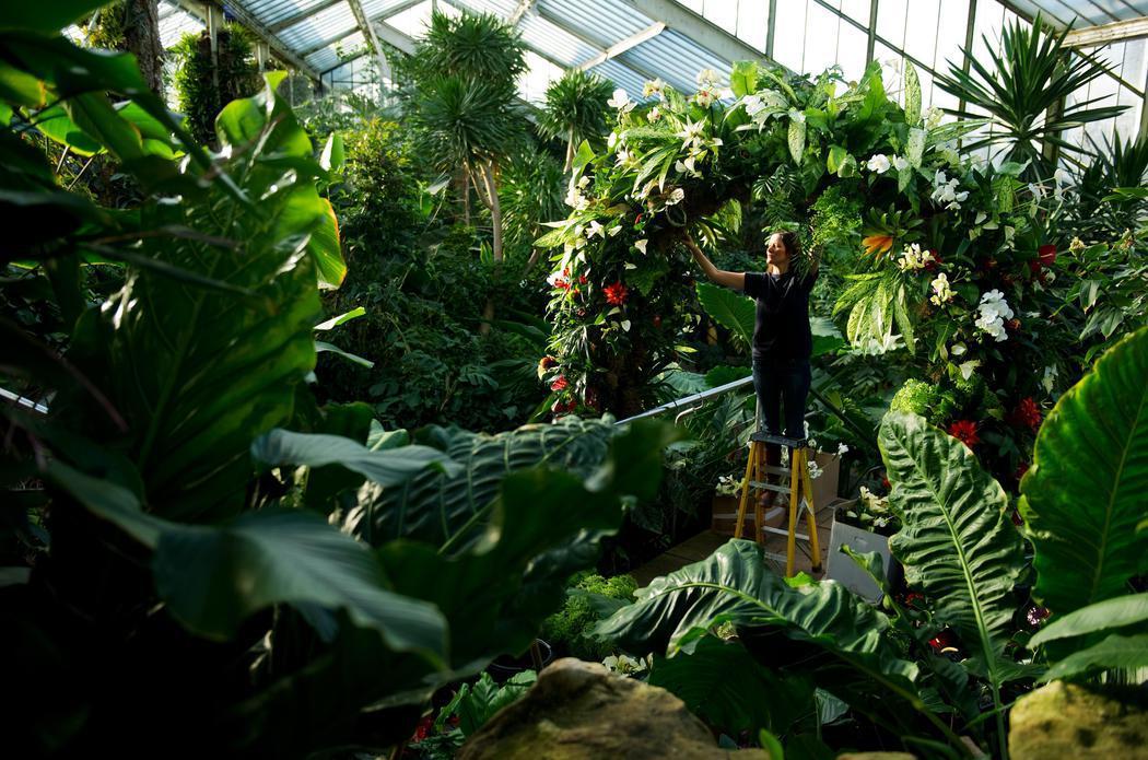 Si eres fan de la botánica, este es tu sitio