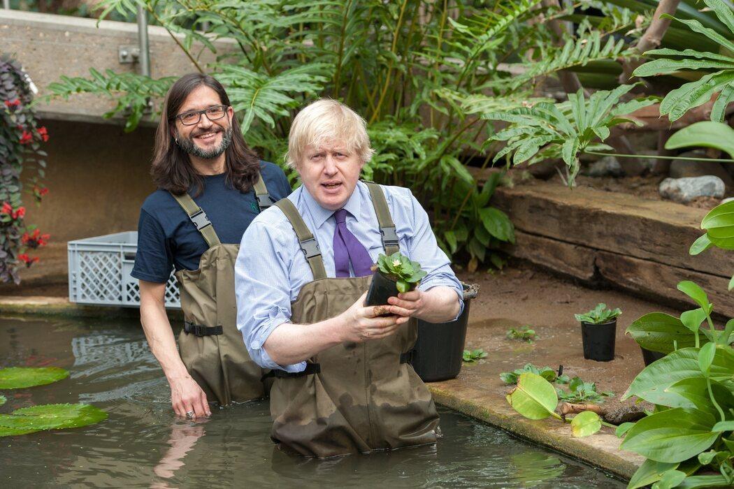 Boris Johnson se moja para plantar flores en el jardín botánico de Londres