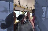Expulsada de un autobús por toser sin mascarilla